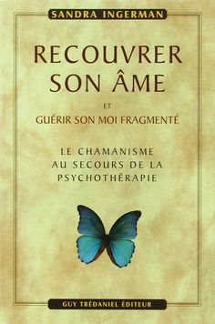 Amazon.fr - Recouvrer son âme et guérir son moi fragmenté - Sandra Ingerman, Olivier Clerc - Livres