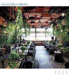 cafe( aoyama flower market cafe)