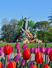 Washington Park, Albany NY. Just a few short blocks from 74 State Hotel in downtown Albany