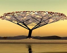 Tree Canopy is just a concept at this stage but its a darn good one! Designed by the clever people at 51% Studios, it's form and structure was inspired by the African Acacia tree which you will see dotted all over the African countryside.