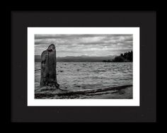 Lake Almanor Framed Print featuring the photograph Lady In Red by Marnie Patchett