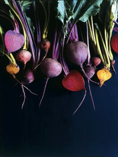 Root Vegetables in Purple [this would be such a beautiful print or painting for the kitchen!]