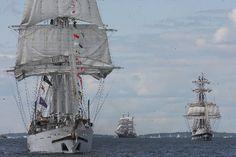 Tall ships coming to Newport / Sailing