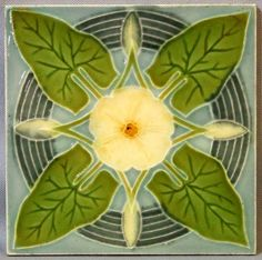 A central creamy yellow flower is surrounded by arrow shaped leaves. Concentric circles around the flowers represent rippling water as if the flowers were dropped onto a calm pond of light blue water.
