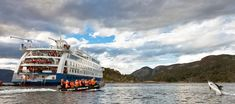 Australis expedition cruises journey through the wonders of the southernmost Patagonian channels. Explore Patagonia, Tierra del Fuego and Cape Horn. Patagonia, Cap Horn, Les Fjords, Le Cap, Argentine, End Of The World, Antarctica, Horns, Cape