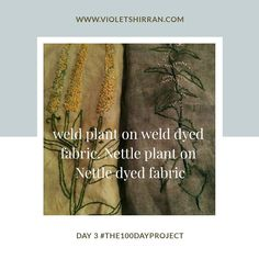 Day 3: #the100dayproject #100daysofstitchandsketch Weld on weld and Nettle on Nettle.