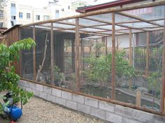 Something Creative with Bird Aviary Plans : Bird Aviary Building Plans.
