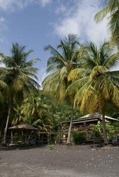 Anse Noire - Photos de vacances de Antilles Location #Martinique