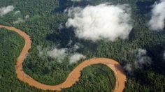 Descubren pirámide circular de más 2.000 años de antigüedad en la Amazonia de Bolivia – RT
