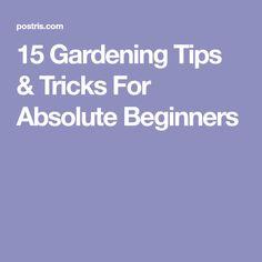 15 Gardening Tips & Tricks For Absolute Beginners