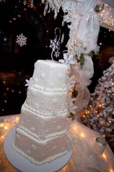 Gorgeous winter-themed cake at Wedgewood Wedding  Banquet Centers!