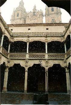 Claustro de la Casa de las Conchas,  Salamanca.