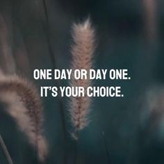 One day or day one. It's your choice! 🏃 #quotes #quoteoftheday #quotesaboutlife #motivation #motivationalquotes