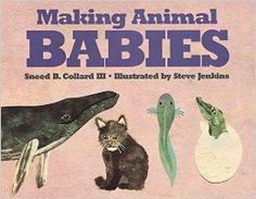 I thought this book was a wonderful way to introduce reproduction in a very basic way to young children (skip the page about whales and mammals until you're ready for them to possibly make the connection with humans). I read it to my children after we saw my mother-in-law's dogs mate repeatedly. Without mentioning human reproduction, it is an excellent way to pave the way for later sex conversations as it introduces the concept of male seed and female egg coming together to create new life.