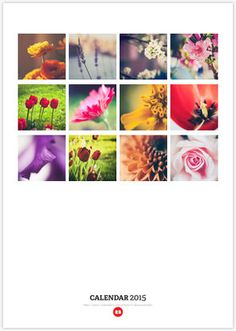 Who wouldn't want to start their days with beautiful flowers? If you love flowers as much as I do, this calendar is for you! My 'One Flower A Month' calendar is now available on my Redbubble shop. flower, close up, macro, nature, beautiful, pretty, feminine, girly, love, details, colour, color, purple, lavender, mood, rose, tulip, red, pink, petal, violet, orange, bloom, white, spring, summer, winter, fall, autumn