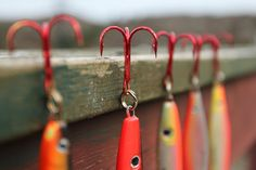 The number one resource for Fishing gear and information Gone Fishing, Kayak Fishing, Fishing Tackle, Fishing Stuff, Bait A Hook, Lakeside Living, Fishing Photography, Farm Photo, Down South