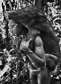 Gênesis | Os korowai passam seus dias na floresta e dela retiram tudo o que precisam para sobreviver. Comem desde javalis e frutos a insetos. Iran Jaya, Indonésia. 2010.