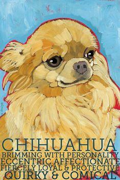 Chihuahua No. 7 magnets coasters and art prints by ursuladodge
