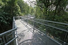 Forest Walk - from the the Alexandra Arch at the HortPark to  Blangah Hill Park, Singapore;  designed by LOOK Architects Pte Ltd;  1.6 km elevated pedestrian walkway