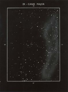 Vintage Astronomy Print, Canis Major Constellation Star Map, Black and White Space And Astronomy, Astronomy Science, Sky Full Of Stars, Space Time, To Infinity And Beyond, It Goes On, Aesthetic Vintage, Aesthetic Wallpapers, Aesthetic Backgrounds