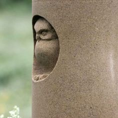 Owl in hollow carved into sandstone Pinned by www.myowlbarn.com Small Sculptures, Animal Sculptures, Soapstone, Granite, Stone Work, Rock Sculpture, Pottery Sculpture, Earthenware, Hobbies And Crafts