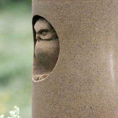 Owl in hollow carved into sandstone Pinned by www.myowlbarn.com
