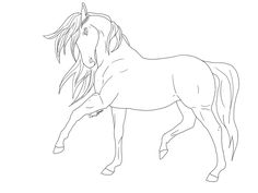 Line drawings hoeses | Horse Line art by Whitelupine on deviantART