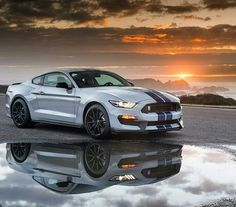 Ford Mustang Shellby