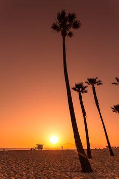 Sunset, Venice Beach / LA