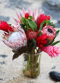 Protea Ginger bouquet from Blooms of Hawaii. Protea Wedding, Floral Wedding, Wedding Bouquets, Wedding Flowers, Hawaiian Theme, Hawaiian Flowers, Tropical Flowers, Pink Ginger, Ginger Flower