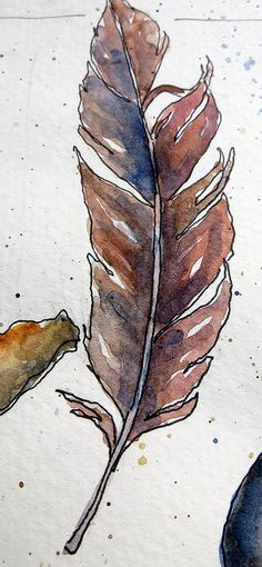 Inspiration for Sketch a day day 18: Feather   from my sketchbook ~ beach treasures | Flickr - Photo Sharing!