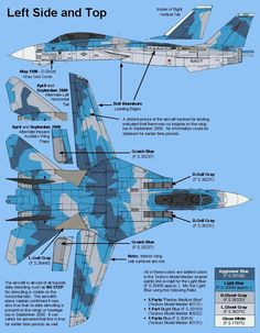 Grumman F-14 Tomcat / Unit: Fighter Weapons School, US Navy : Serial: 20/NSAWC
