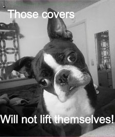 Those covers won't lift themselves!