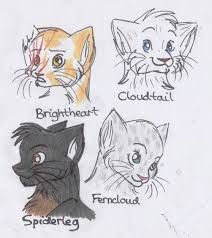 A few doodles of some Warriors Characters. Spiderleg, Cloudtail, Ferncloud and Brightheart ^~^ Warriors Doodles Warrior Cats Series, Warrior Cats Fan Art, Warrior 3, Scooby Doo Mystery Incorporated, The Dark Knight Trilogy, Love Warriors, Cat Sketch, Star Wars, Comic