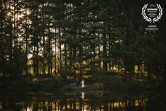 Award-winning post-wedding picture - Wedaward - couple in a forest at sunset by a lake - Zephyr & Luna photograhy