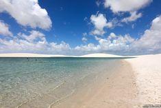 Circuito-lagoa-das-emendadas Beach, Water, Outdoor, Capybara, Ponds, Sidewalk, Brazil, Circuit, Water Water