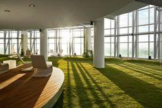 indoor grass - Google 検索