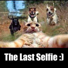 selfie death | Last selfie before death :)