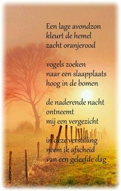 Maria Rose, Words Quotes, Sayings, Dutch Quotes, Poems Beautiful, Morning Pictures, Free Personals, God Jesus, Any Book