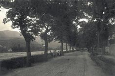"""Οδός Δενδρακίων στην Καλαμάτα, οδός περιπάτου καθώς ιστορούσαν οι παλιοί.  Πρόκειται για τη σημερινή οδό Σπάρτης, η οποία τότε ήταν φυτεμένη αρχικά με πεύκα και στη συνέχεια με πλατάνια. Διακρίνεται μια ομάδα παιδιών και ο μαντρότοιχος της (διευθετημένης) κοίτης του Νέδοντα.   [Φωτό από το λεύκωμα των ΓΑΚ Αν. Μηλίτση-Νίκα, Χρ. Θεοφιλοπούλου-Στεφανούρη """"Καλαμάτα 1830-1940, Οδοιπορικό σε πλατείες και δρόμους της πόλης"""" σελ. 69] Sigma Tau, Once Upon A Time, Sidewalk, Nature, Outdoor, Outdoors, Naturaleza, Side Walkway, Sidewalks"""