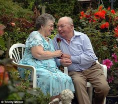 True romance: Britain's real-life Romeo has put a rose by his wife's bedside every day for 60 years