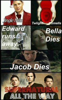 279 Best Lets Make Fun Of Twilight Images Fandom Fandoms Funny