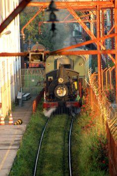locomotiva-maria-fumaca-museu-do-imigrante