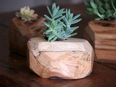 Wood Succulent Planter - Indoor Plant Holder - Reclaimed Wood Planter