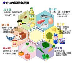 食育と健康 三色食品群と6つの基礎食品群