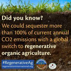 #RegenerativeAg: A shovel-ready solution to the climate crisis #COP21 #ClimateChange #Paris2015