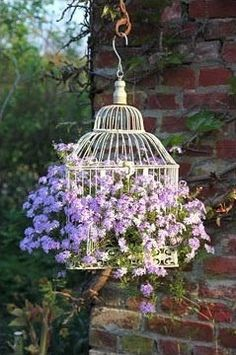 Old, intricate birdcage repurposed into unique hanging flower basket. Also use with wicker, but more prone to rot.