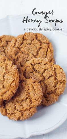 Crunchy and slightly chewy Ginger Snap Cookies, spiced with ginger and sweetened with honey. Chip Cookies, Cookies Et Biscuits, Easy Desserts, Delicious Desserts, Brownie Bites Recipe, Cookie Recipes, Dessert Recipes, Ginger Snap Cookies, Honey Cookies