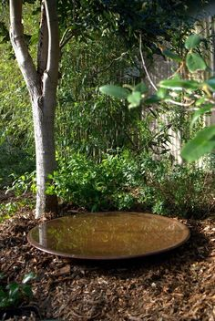 The Large Spun Copper Dish is a wide and shallow bird bath. It is 78cm wide by 5cm deep, and holds 12 litres of water. Birds like to bathe in shallow water and