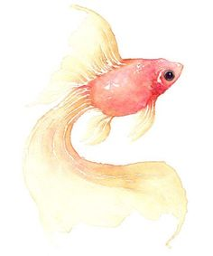 Beautiful and simple watercolor - I love how the pink and yellow stands out!
